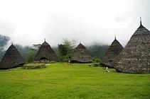 Trip Flores island Indonesia