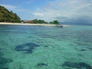Komodo island trip