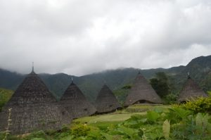 Eco tour Komodo Flores